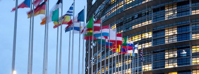 Brexit, Moore Stephens International, Moore Stephens Europe Limited.